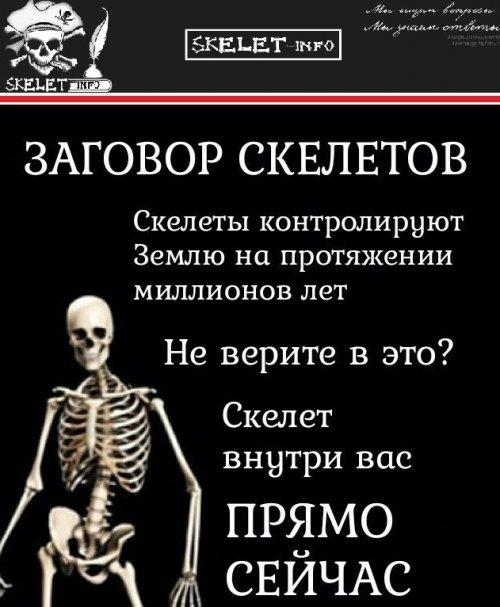 досье. биография, компромат, новости, Украина, SkeletInfo