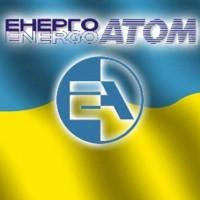 Кабмин назначил расследование в отношении врио главы Энергоатома Котина