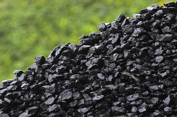 Кузяра взят под стражу из-за подозрений в незаконной поставке угля из ЛДНР на 1,5 млрд