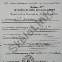 Старух Александр: как запорожский махинатор дважды стал губернатором. ЧАСТЬ 2