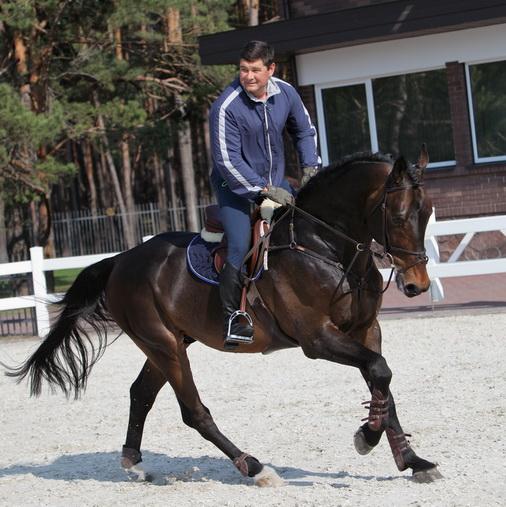 онищенко на коне