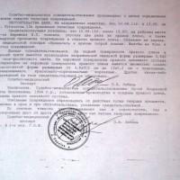 дело по Андреевой Бережная