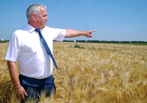 Гуляев Василий